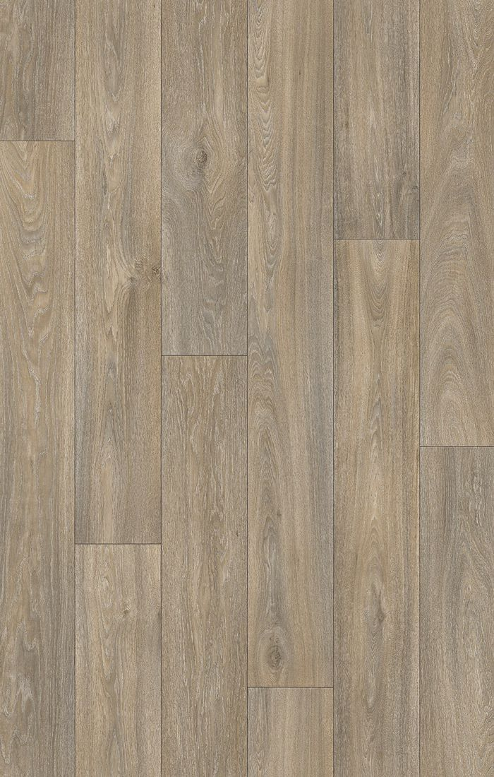 Atlantic Havanna Oak 613