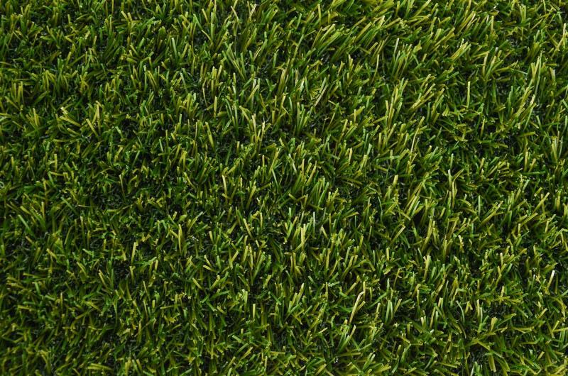 Magic Grass 28